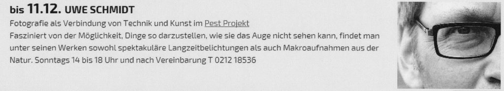 Homepage Pest Projekt 2500